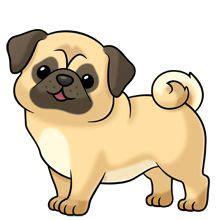 Descriptive EssayMy dog Victoria202s Blog