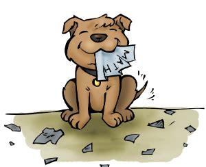 Essay on puppy dog